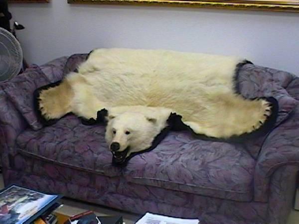 au canada on sait vendre ch rement la peau des autres chroniques de toronto. Black Bedroom Furniture Sets. Home Design Ideas